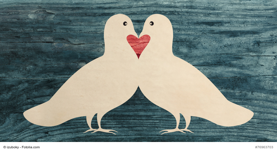 doves in love.jpg